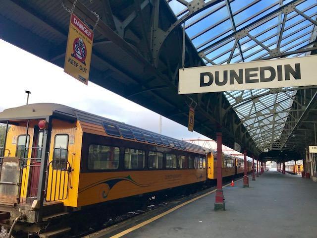 【ニュージーランド】歴史と自然に溢れた都市「ダニーデン」
