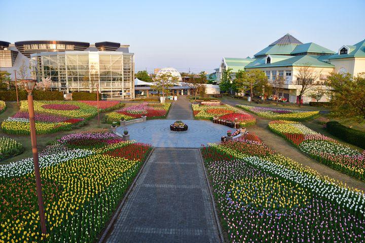 新潟の魅力が詰まってる!新潟県内のおすすめ道の駅10選