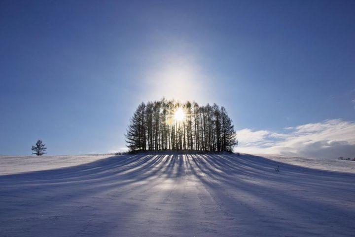 冬本番!日本の雪景色を堪能する家10選