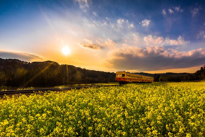 """悩みがあるなら旅に出よ!千葉県にある""""ひとり旅""""で行きたい至極の絶景7選"""