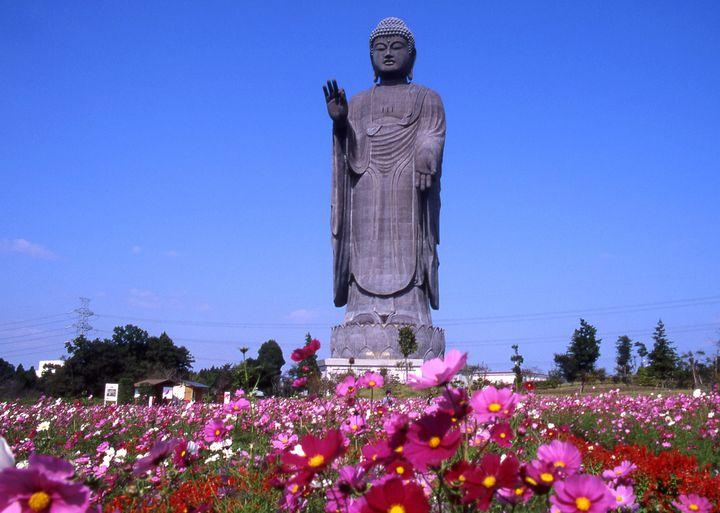 これぞ日本!自然や歴史を感じる茨城県の魅力のスポット