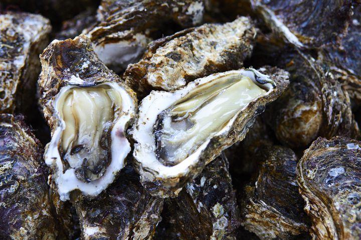 【終了】新鮮な牡蠣を味わう!博多で開催の「かき小屋 in ベイサイド」が気になる