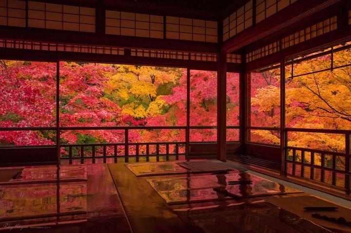 【開催中】まるでCGのような美しい紅葉の景色。瑠璃光院「秋の特別拝観」今年も開催