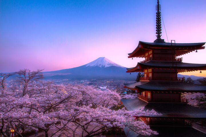四季を楽しむ『To Go』リスト完全版!日本国内の月別おでかけスポット40選