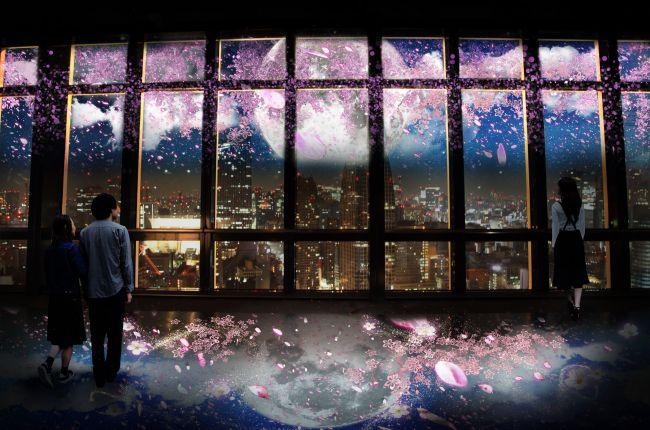 【終了】東京の夜景と桜が融合!東京タワーでネイキッドが創る夜桜体験を