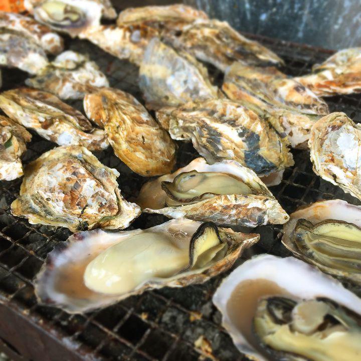 冬の味覚・牡蠣のたらふく食べたい!兵庫県内にある新鮮な牡蠣が食べれるお店9選
