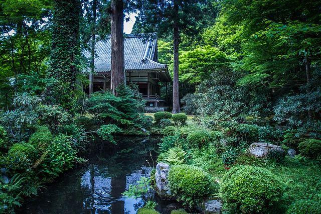 雨でも楽しめる京都の屋内観光&プレイスポット9選