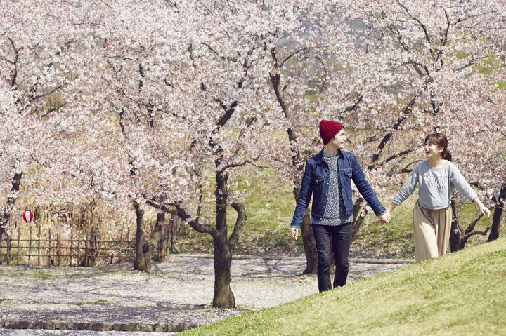 """春の陽気に誘われて。""""春×デート""""にぴったりの、東京近郊のデートスポット10選"""