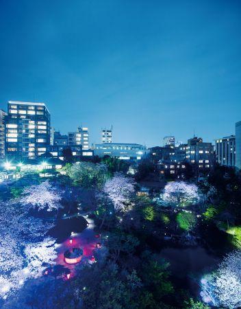【開催中】約90本の桜と東京の粋を楽しむ。「八芳園 Spring Festival」開催