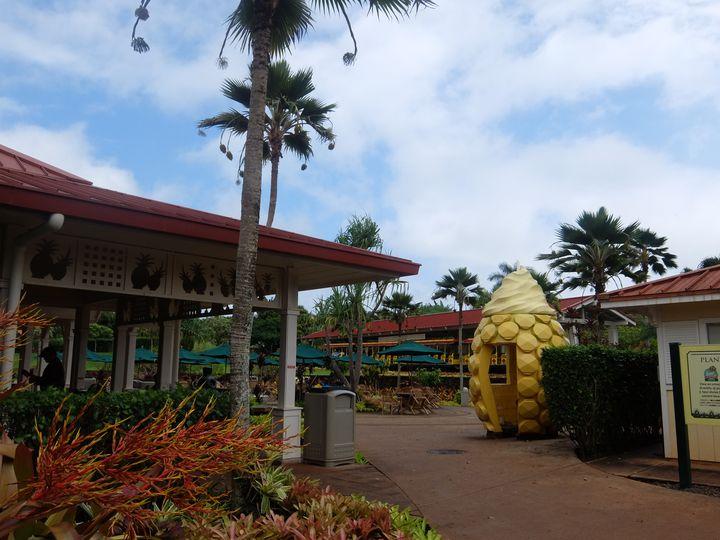 """広大なパイナップル農園!ハワイの""""ドールプランテーション""""が素敵すぎた"""