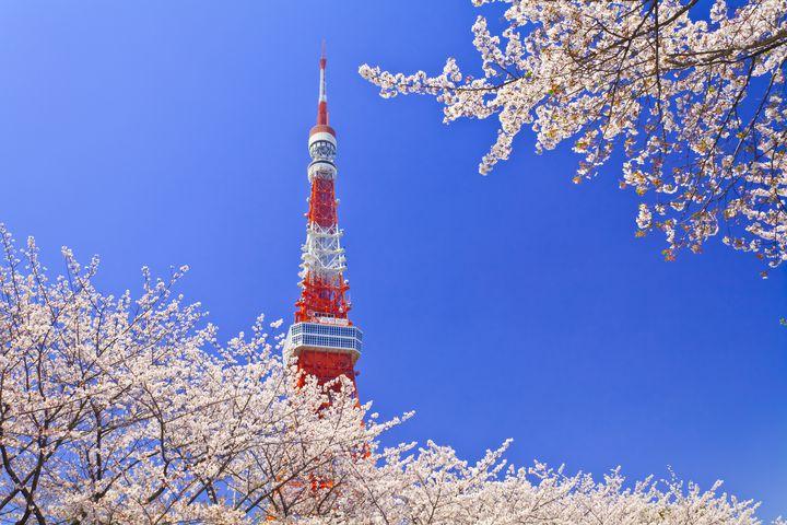 今しか見られない景色を巡る。東京都内の桜の名所・穴場めぐり8選