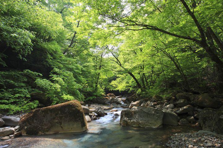 自分を見つめ直す旅へ出発!関東女子ひとり旅で行きたいおすすめスポット14選