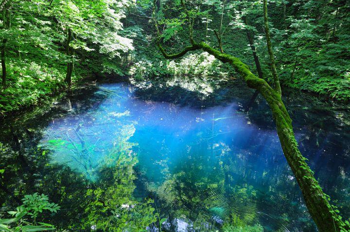 夏ならではの美しさ!絶対外さない「青森」のおすすめ観光スポット12選をご紹介