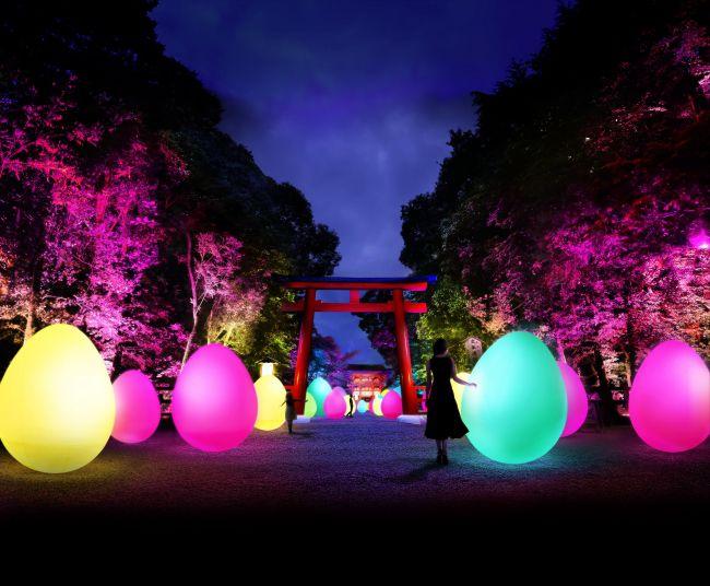 【終了】「下鴨神社 糺の森の光の祭 Art by teamLab」京都で開催