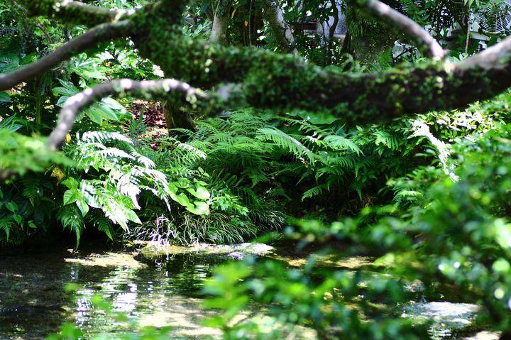 涼を求めて島原へ!体も心も涼しくなれる長崎「島原」のスポット10選
