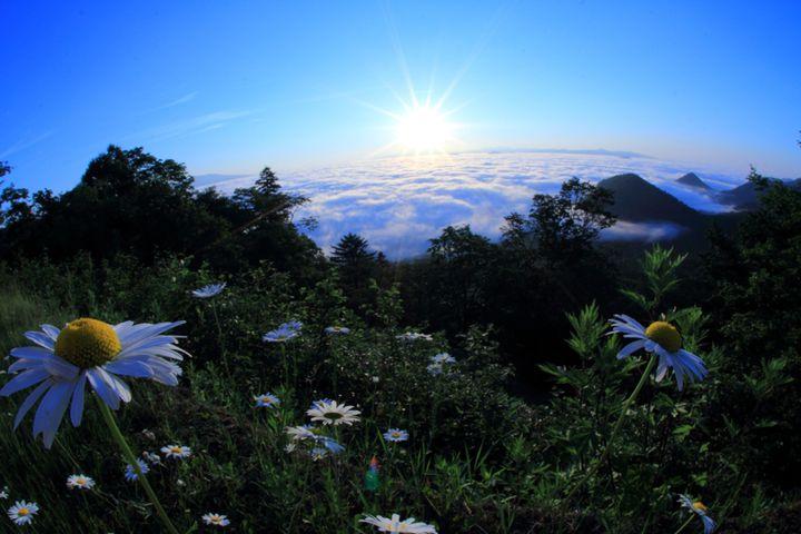"""この夏、わたし史上最高の絶景へ。北海道・津別峠展望台の""""雲海""""がすごすぎる"""