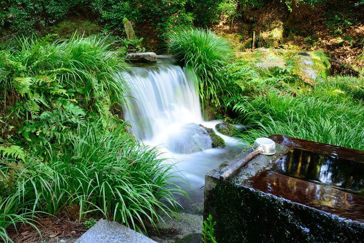 全国の旅人が選んだ!日本の湧水・名水ランキングTOP10