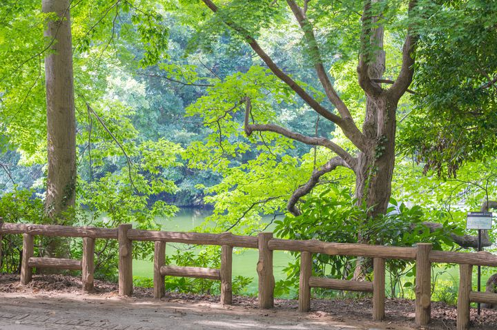 """恋の季節だから。""""夏の初デート""""で行きたい東京都内のデートスポット12選"""