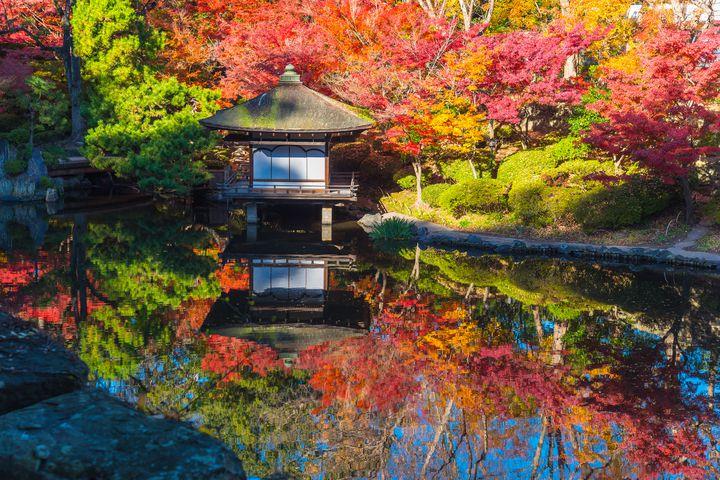 おすすめです!風薫る秋の和歌山の紅葉名所ランキングTOP5