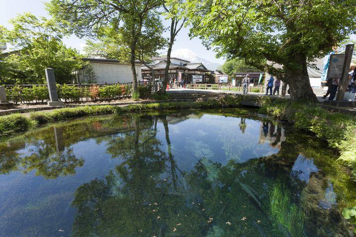 """世界に誇る名水の里。山梨県にある""""忍野八海""""が美しすぎる"""