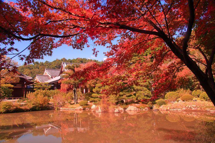 京都民ならここに行く。穴場だらけな秋の京都1泊2日プランをご紹介