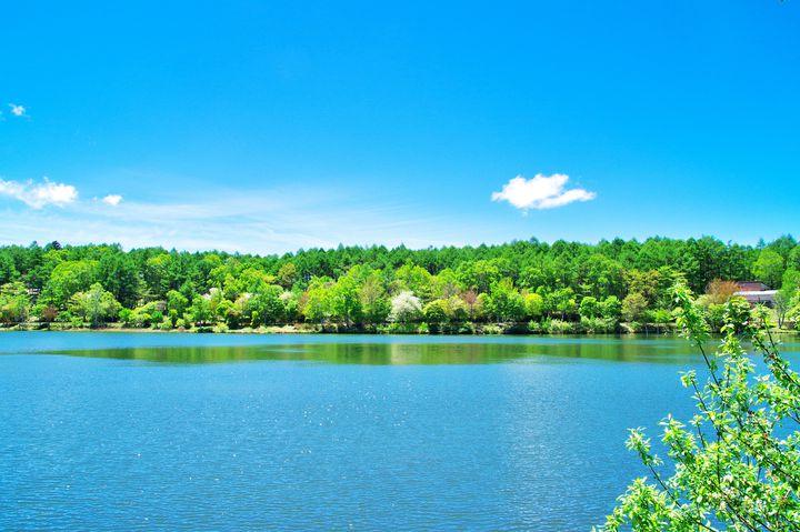長野県 白樺湖周辺 のおすすめ観光地 どの季節に行っても楽しめる7