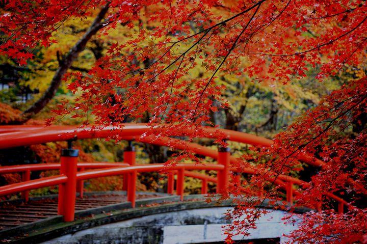 秋のデートはこれで決まり!週末に行ける紅葉を堪能できる東京近郊の温泉地9選