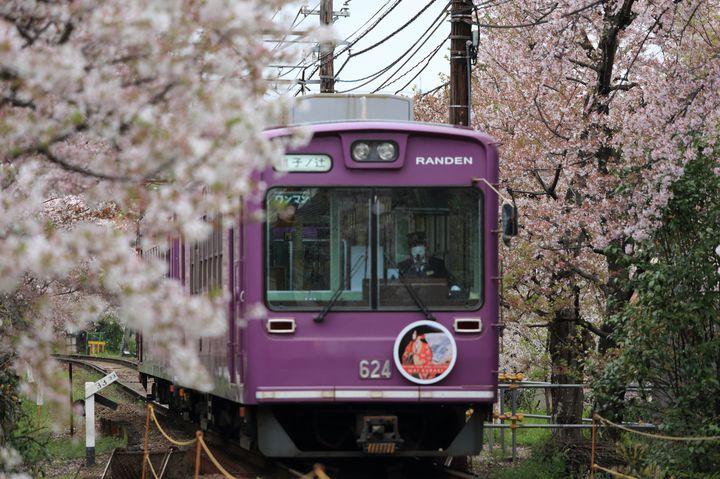 世界中が求める絶景と歴史がここに。京都・嵐山の観光おすすめ15選
