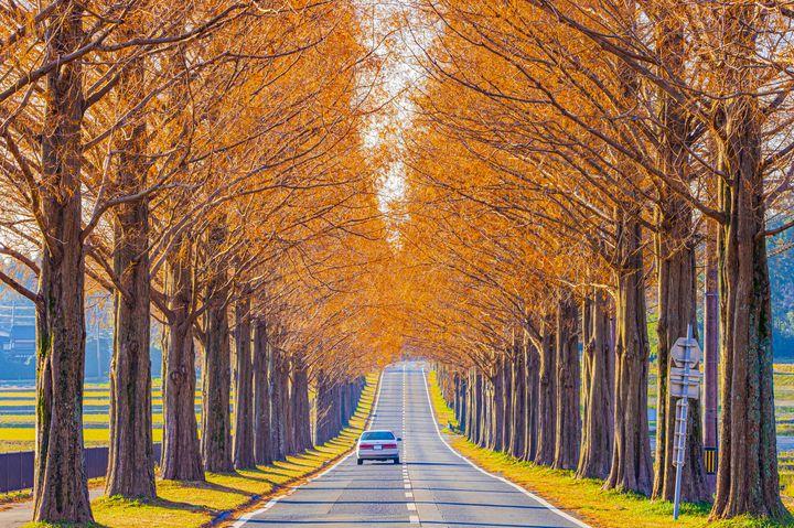 絶景好きが厳選する!この秋行きたい関西にある美しすぎる究極の絶景7選