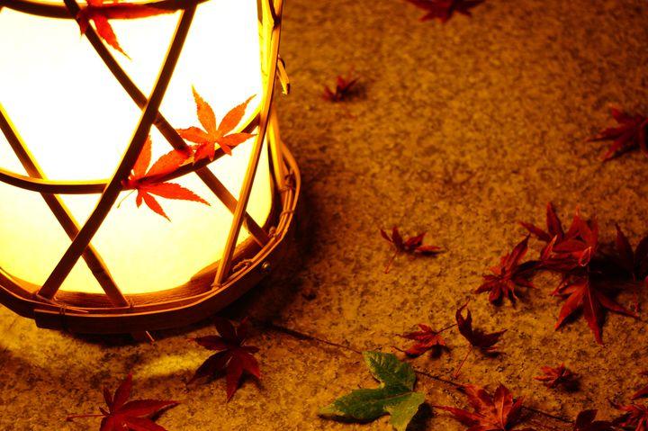 """秋の夜長に恋の薫り。東京近郊の""""秋夜に照らされる""""デートスポット10選"""