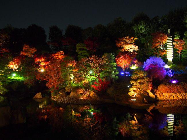 【終了】都会の中のオアシスで紅葉狩り。豊島区立目白庭園で「秋の庭園ライトアップ」開催