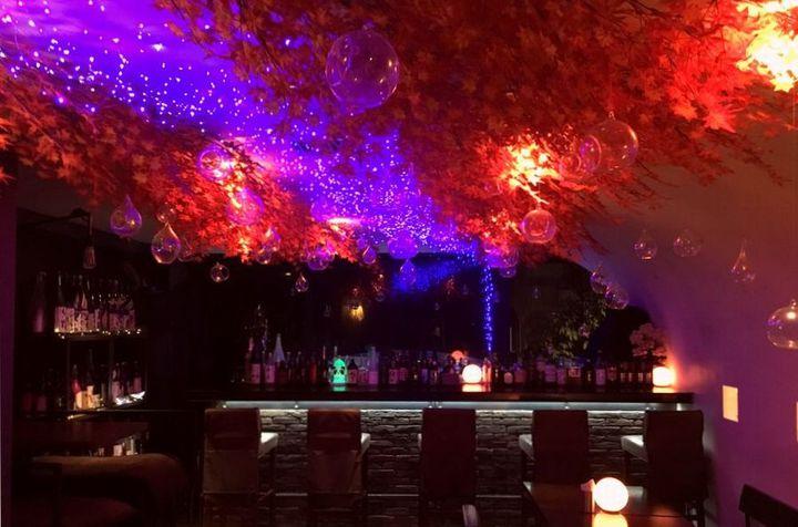 【終了】室内で秋の夜空を満喫!吉祥寺のバーで紅葉とイルミのコラボイベント開催