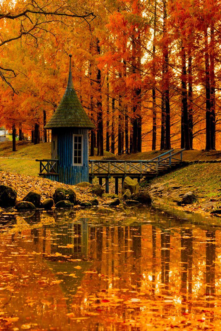 """秋に赤らむ君の頬。東京近郊の恋人と行く""""秋のラブラブデート""""スポット12選"""