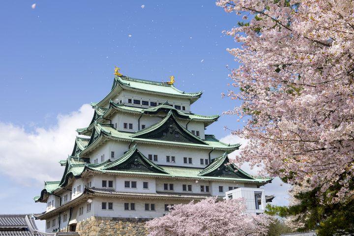 名古屋城を楽しむための7つのこと!お城以外にも楽しみが盛りだくさん