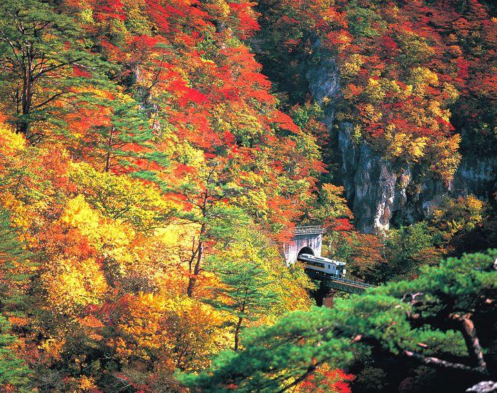 秋の絶景も旬の味も!秋の宮城観光でおすすめしたい楽しみ方とは