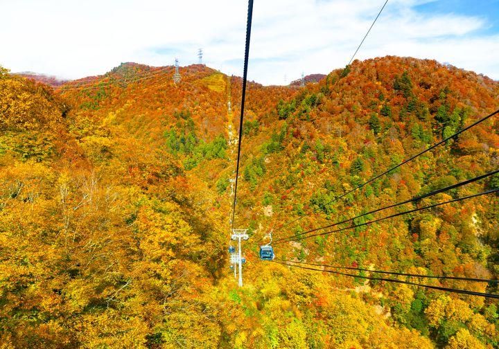 秋ならではの絶景を。日本全国「10月下旬に見頃を迎える」紅葉スポット10選