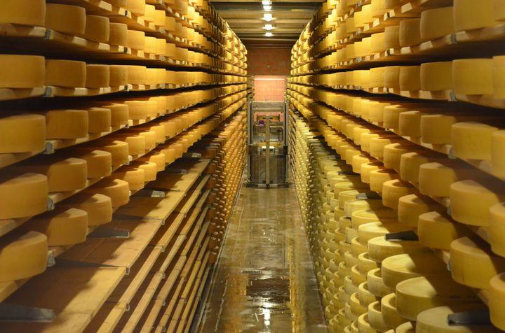 チーズと絶景を堪能する!アルプスの麓の村・グリュイエールの観光地7選