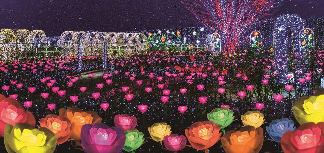 """【終了】日本三大イルミに認定!あしかがフラワーパークの""""光と花の競演""""イルミが見たい"""