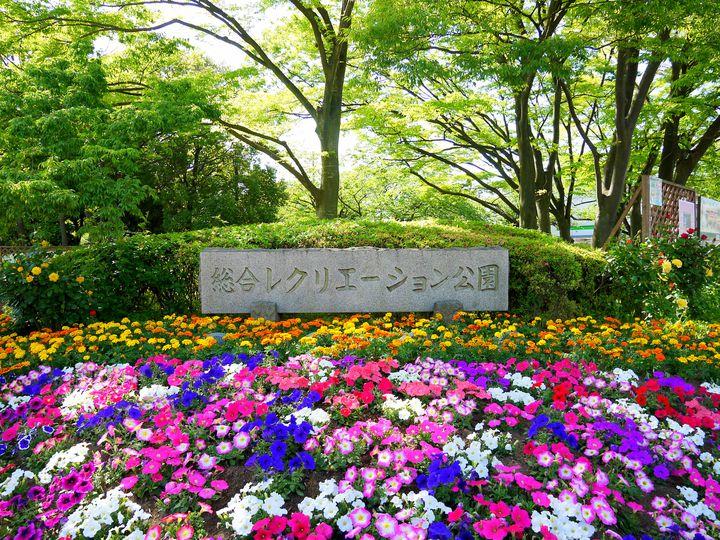 東京の公園で子供と沢山遊ぼう!おすすめ15選