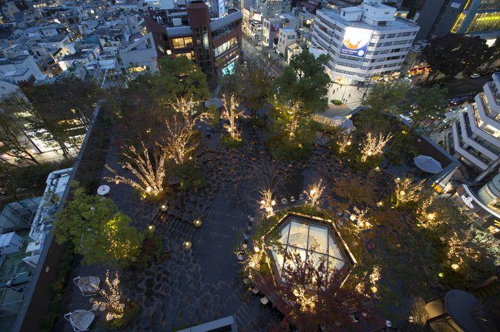 【終了】自然と光が作り出す空間。東急プラザ「おもはらの森」でイルミネーション開催