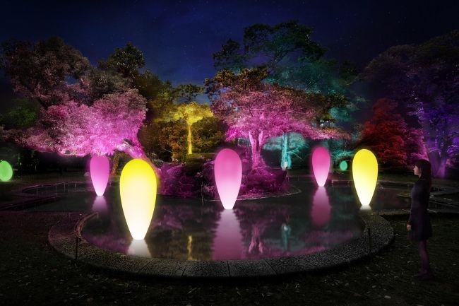 【終了】光のアート空間が現れる。「チームラボ 広島城 光の祭」開催