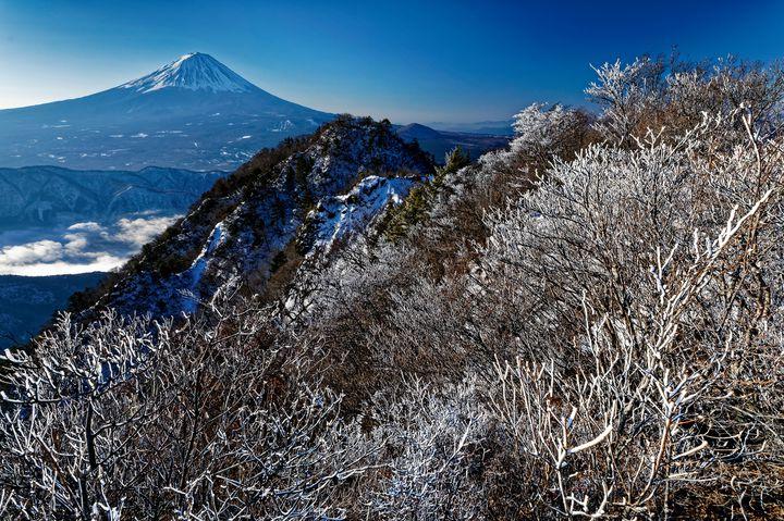 【終了】関東近郊でも『樹氷』は見られます!山梨県で「西湖樹氷祭り」が開催