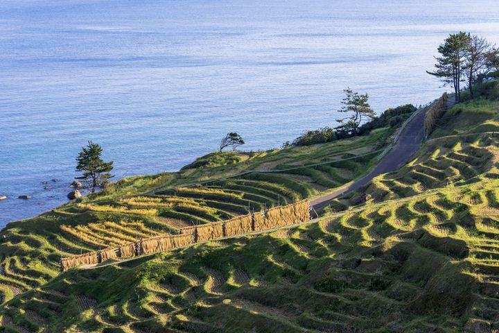 石川は金沢だけでじゃない。能登まで行かなくちゃ。能登半島のおすすめ観光地10選