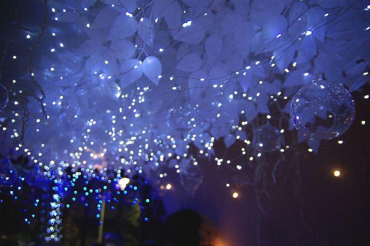 【終了】デートや女子会ならここ!青の輝きに包まれる冬の吉祥寺SUN Tama Barへ