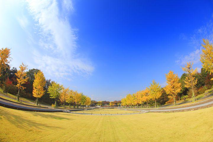 秋はお散歩に行こう!この秋おすすめの関東お散歩コース8選