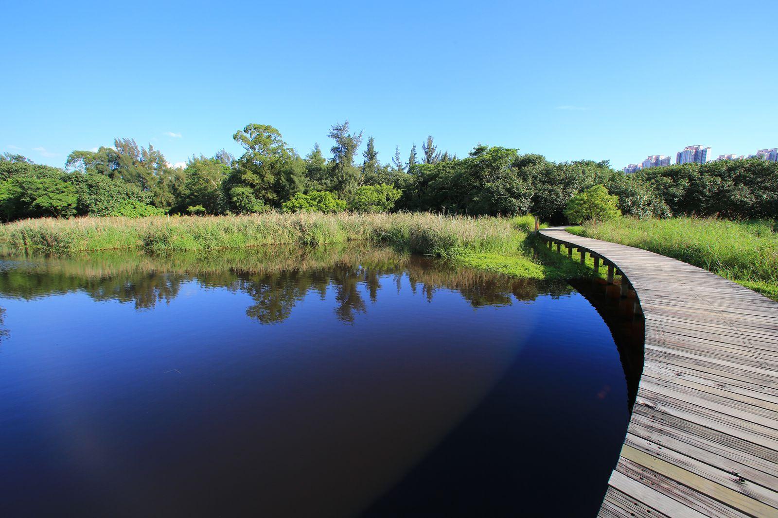 1日楽しめちゃう!人気の観光地で緑に癒される「香港湿地公園」とは