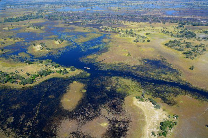 【絶景】死ぬまでに絶対行きたい、世界最大の内陸デルタ世界遺産「オカバンゴ」