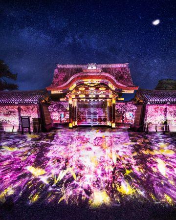 【終了】世界遺産×現代的アート!京都で「二条城桜まつり」開催