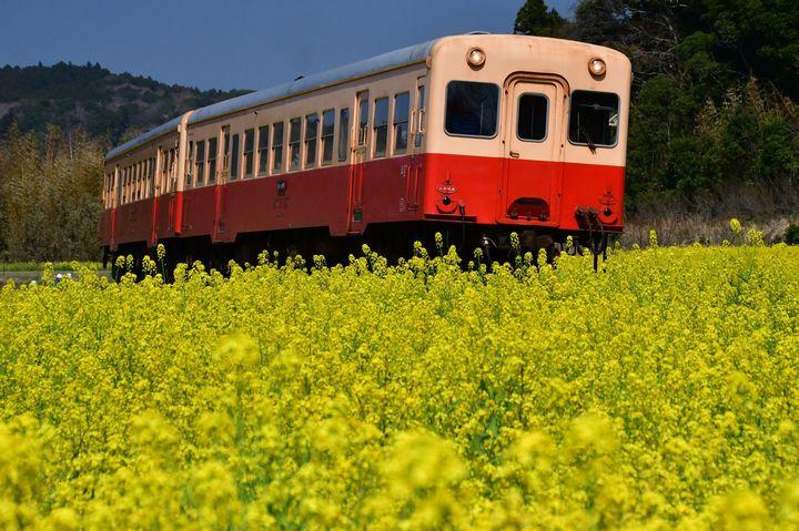 大人も子供も楽しめる!家族旅行におすすめな電車旅スポット10選