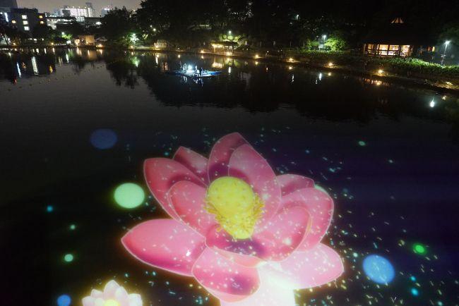 【終了】水面に咲くハスをテーマにした夜のアートイベント「~YohaS~」千葉で開催